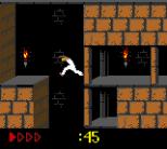 Prince of Persia GBC 38