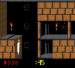 Prince of Persia GBC 39