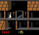 Prince of Persia GBC 40