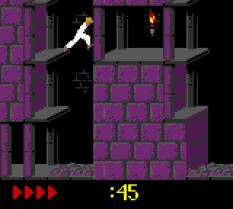 Prince of Persia GBC 43