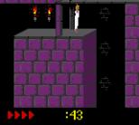 Prince of Persia GBC 48
