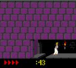 Prince of Persia GBC 49