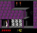 Prince of Persia GBC 51