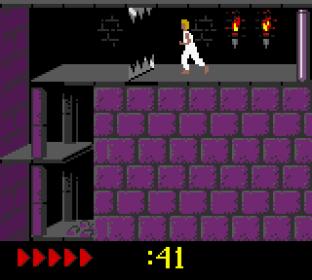 Prince of Persia GBC 56