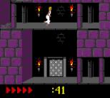 Prince of Persia GBC 57