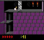 Prince of Persia GBC 58
