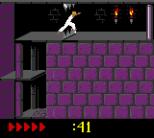Prince of Persia GBC 59