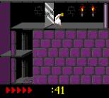 Prince of Persia GBC 60