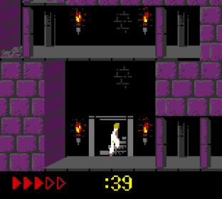 Prince of Persia GBC 64