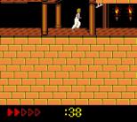 Prince of Persia GBC 70
