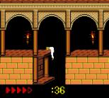 Prince of Persia GBC 73
