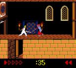 Prince of Persia GBC 79