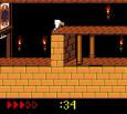 Prince of Persia GBC 81