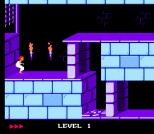 Prince of Persia NES 03