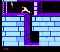 Prince of Persia NES 06