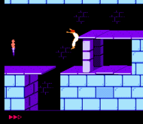Prince of Persia NES 07