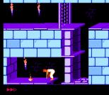 Prince of Persia NES 08