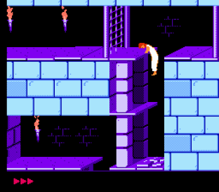 Prince of Persia NES 09