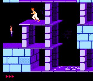 Prince of Persia NES 12