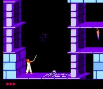Prince of Persia NES 13