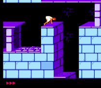 Prince of Persia NES 14