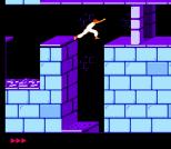 Prince of Persia NES 15