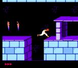 Prince of Persia NES 16