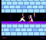 Prince of Persia NES 17
