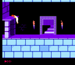Prince of Persia NES 18