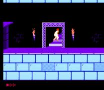 Prince of Persia NES 19