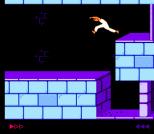 Prince of Persia NES 24