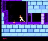 Prince of Persia NES 26