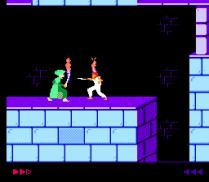 Prince of Persia NES 27