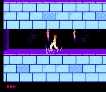 Prince of Persia NES 28