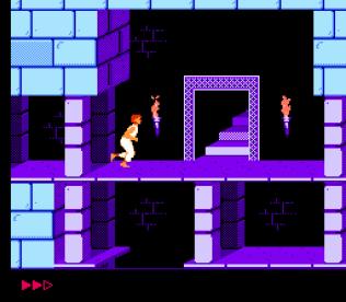Prince of Persia NES 32