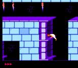 Prince of Persia NES 36