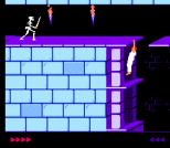 Prince of Persia NES 41