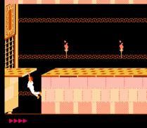 Prince of Persia NES 48
