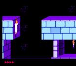 Prince of Persia NES 60