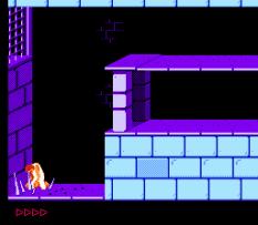 Prince of Persia NES 66