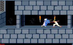Prince of Persia PC 17