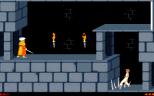 Prince of Persia PC 19