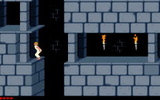 Prince of Persia PC 22