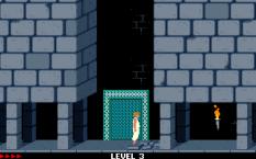Prince of Persia PC 25