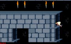 Prince of Persia PC 27