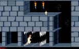 Prince of Persia PC 29