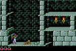 Prince of Persia Sega CD 07