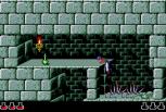 Prince of Persia Sega CD 18