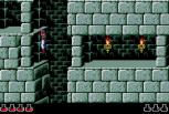 Prince of Persia Sega CD 19