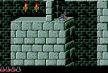 Prince of Persia Sega CD 25